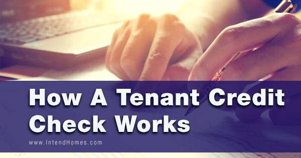 How A Tenant Credit Check Works