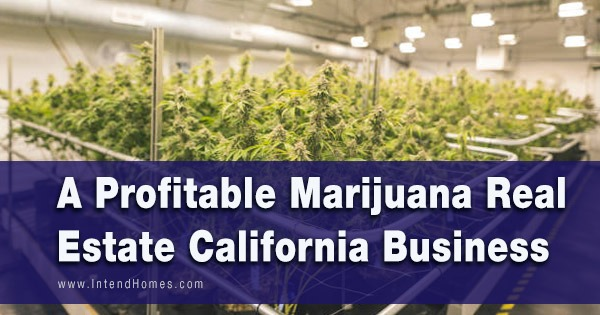 A Profitable Marijuana Real Estate California Business